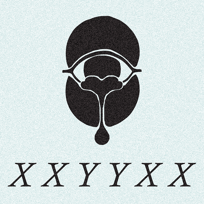 Gallery Xxyyxx Album Name